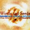 風と種子 久石譲の世界 ナウシカ・アリオン・ラピュタ sc1